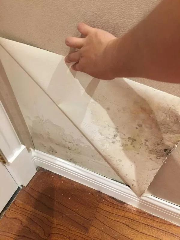 盈康世家木门:资深装修师傅一语道破,壁纸与竹木护墙板的区别!